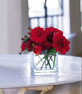 Tokat çiçek servisi , çiçekçi adresleri  kirmizinin sihri cam içinde görsel sade çiçekler
