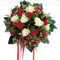 Tokat çiçek servisi , çiçekçi adresleri  6 adet kirmizi 6 adet beyaz ve kir çiçekleri buket
