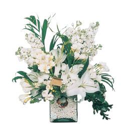 Tokat çiçek yolla , çiçek gönder , çiçekçi   sadece beyazlardan olusmus mevsim cam yada mika tanzim