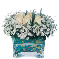Tokat kaliteli taze ve ucuz çiçekler  mika yada cam içerisinde 7 adet beyaz gül