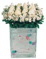 Tokat kaliteli taze ve ucuz çiçekler  7 adet beyaz gül cam yada mika vazo tanzim