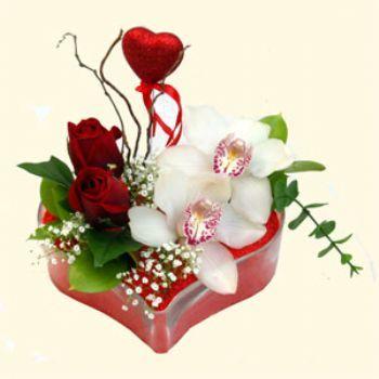 Tokat ucuz çiçek gönder  1 kandil orkide 5 adet kirmizi gül mika kalp