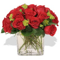 Tokat anneler günü çiçek yolla  10 adet kirmizi gül ve cam yada mika vazo