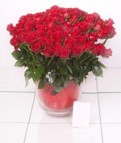 Tokat çiçek yolla  101 adet kirmizi gül