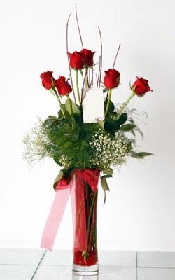 Tokat çiçek gönderme  6 adet kirmizi gül ve cam yada mika vazo