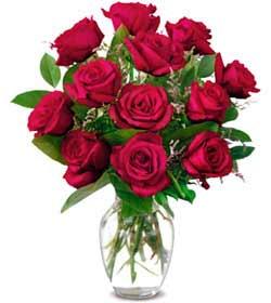 Tokat çiçek gönderme sitemiz güvenlidir  1 düzine kirmizi gül sevenlere özel vazo gülleri