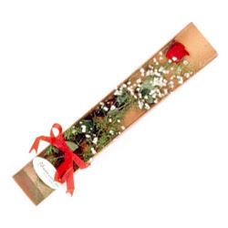 Tokat çiçek online çiçek siparişi  Kutuda tek 1 adet kirmizi gül çiçegi