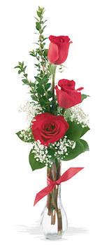 Tokat çiçek gönderme  mika yada cam vazoda 3 adet kirmizi gül