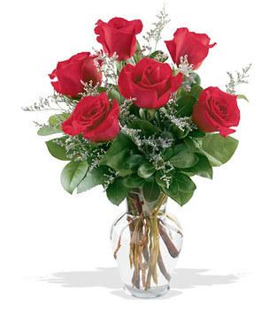 Tokat çiçek gönderme  cam yada mika vazoda 6 adet kirmizi gül