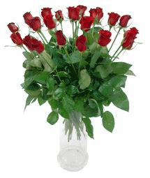 Tokat anneler günü çiçek yolla  11 adet kimizi gülün ihtisami cam yada mika vazo modeli