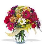 Tokat çiçek online çiçek siparişi  cam yada mika vazo içerisinde karisik kir çiçekleri