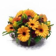 gerbera ve kir çiçek masa aranjmani  Tokat İnternetten çiçek siparişi