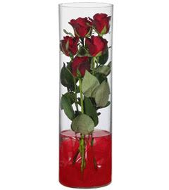 cam içerisinde 7 adet kirmizi gül  Tokat online çiçekçi , çiçek siparişi
