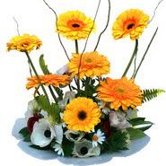camda gerbera ve mis kokulu kir çiçekleri  Tokat anneler günü çiçek yolla