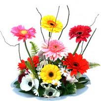 Tokat çiçek mağazası , çiçekçi adresleri  camda gerbera ve mis kokulu kir çiçekleri