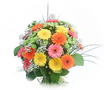 13 adet gerbera çiçegi buketi  Tokat çiçek gönderme sitemiz güvenlidir