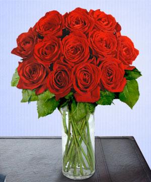 Anneme 12 adet cam içerisinde kirmizi gül  Tokat güvenli kaliteli hızlı çiçek