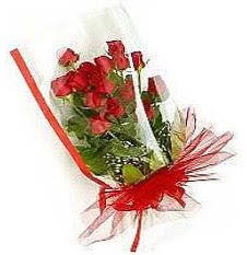 13 adet kirmizi gül buketi sevilenlere  Tokat İnternetten çiçek siparişi