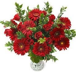 5 adet kirmizi gül 5 adet gerbera aranjmani  Tokat çiçek mağazası , çiçekçi adresleri