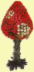 Tokat 14 şubat sevgililer günü çiçek  dügün açilis çiçekleri  Tokat hediye çiçek yolla