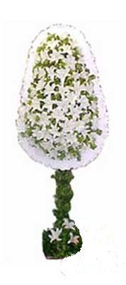 Tokat güvenli kaliteli hızlı çiçek  nikah , dügün , açilis çiçek modeli  Tokat çiçek gönderme sitemiz güvenlidir