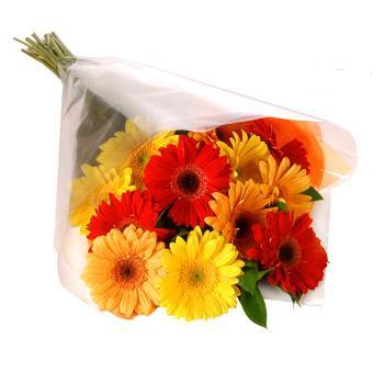Karisik renklerde gerbera buketi  Tokat çiçek gönderme