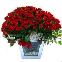 Tokat online çiçekçi , çiçek siparişi   101 adet kirmizi gül aranjmani