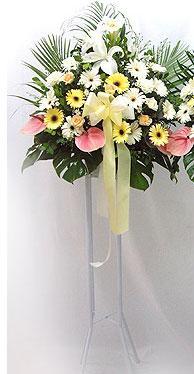 Tokat çiçek gönderme sitemiz güvenlidir   perförje çiçegi dügün çiçekleri