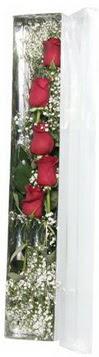 Tokat güvenli kaliteli hızlı çiçek   5 adet gülden kutu güller