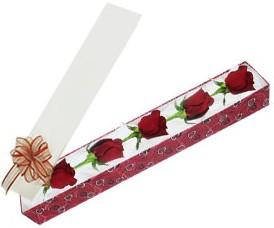 Tokat yurtiçi ve yurtdışı çiçek siparişi  kutu içerisinde 5 adet kirmizi gül