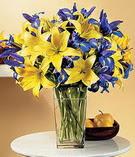 Tokat çiçek , çiçekçi , çiçekçilik  Lilyum ve mevsim  çiçegi özel