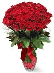 19 adet essiz kalitede kirmizi gül  Tokat çiçek satışı