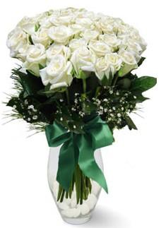 19 adet essiz kalitede beyaz gül  Tokat online çiçekçi , çiçek siparişi