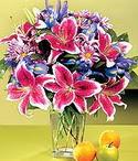 Tokat çiçek siparişi sitesi  Sevgi bahçesi Özel  bir tercih