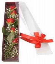 kutu içinde 5 adet kirmizi gül  Tokat çiçek yolla , çiçek gönder , çiçekçi