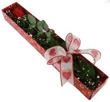 Tek kirmizi gül kutu içerisinde  Tokat çiçekçiler