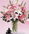 Tokat online çiçek gönderme sipariş  Kazablanka biçme vazoda