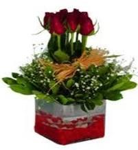 Tokat 14 şubat sevgililer günü çiçek  7 adet mika yada cam vazoda gül tanzimi