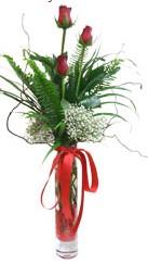 Tokat güvenli kaliteli hızlı çiçek  3 adet kirmizi gül vazo içerisinde