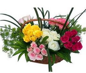 Tokat çiçek servisi , çiçekçi adresleri  35 adet rengarenk güllerden sepet tanzimi