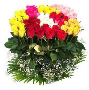 Tokat çiçek siparişi sitesi  51 adet renkli güllerden aranjman tanzimi