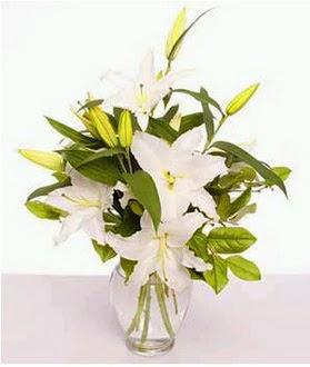 Tokat 14 şubat sevgililer günü çiçek  2 dal cazablanca vazo çiçeği