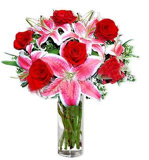 Tokat uluslararası çiçek gönderme  1 dal cazablanca ve 6 kırmızı gül çiçeği