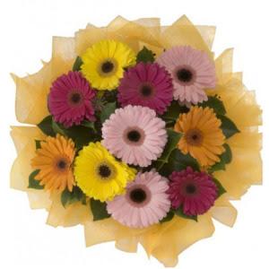 Tokat cicek , cicekci  11 adet karışık gerbera çiçeği buketi