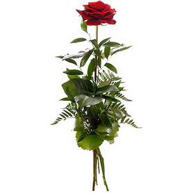 Tokat çiçek siparişi vermek  1 adet kırmızı gülden buket