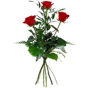 Tokat çiçekçi telefonları  3 adet kırmızı gülden buket