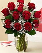 Sevgilime hediye 9 adet 1.ci kalite gül  Tokat çiçek , çiçekçi , çiçekçilik