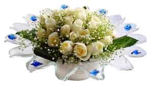 Tokat hediye çiçek yolla  11 adet Beyaz güller özel cam tanzim