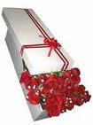 Tokat anneler günü çiçek yolla  11 adet 1.kalite magnum güller