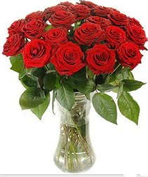 Tokat çiçek siparişi sitesi  Vazoda 15 adet kırmızı gül tanzimi